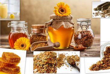 Bienenpollen und wie man konsumiert