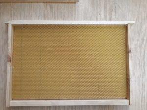 Bienenstock Dadan- Blatt